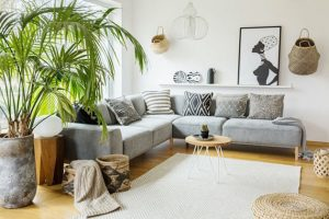 living room with plants, unique coffee table design